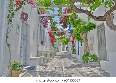 Quiet, shady village street on a greek island in the Cyclades Group with flowering bougainvillea
