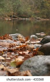 Quiet stream during autumn