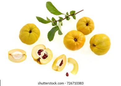 quince berries