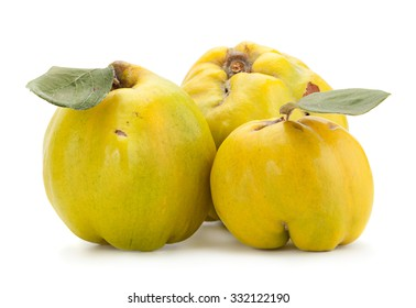 Quince fruit closeup isolated on white background