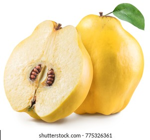 Quince with quince leaf. File contains clipping path.