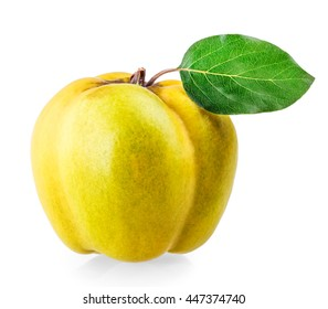 quinces with green leaf isolated on white background clipping path