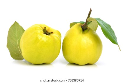 Quinces isolated on white background