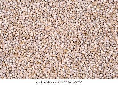 Quinoa (Chenopodium quinoa), background texture