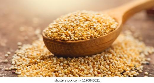 Quinoa White grains in a wooden spoon. Gluten free Healthy food. Diet, dieting concept. Seeds of white quinoa - Chenopodium quinoa
