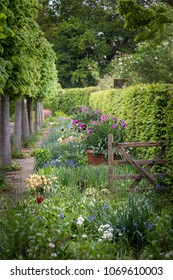 Quintessential English country garden scene landscape with fresh Spring flowers in cottage garden