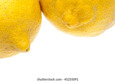 A quirky lemon background or border image from lemons picked fresh in Florida.