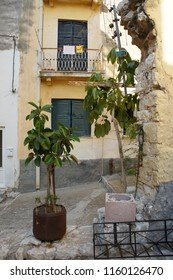 Quite street in the old town Of Corfu. Windows with turquoise shutters on yellow walls and numeros plants in tubs.