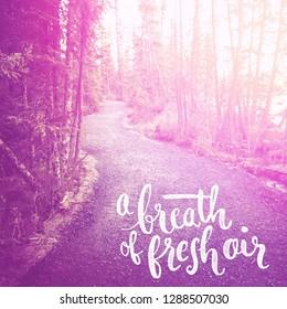 Quote - a breath of fresh air