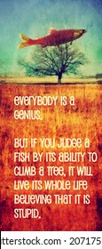 a quote with a fish in a tree toned with a warm instagram like filter (image is blurred - focus on the text)