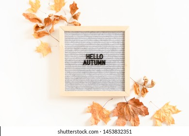 Quote Hello autumn. Composition with letterboard, and dried maple leaves on white background