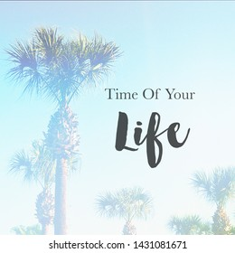 Quote - Time of your Life with palm tress in background