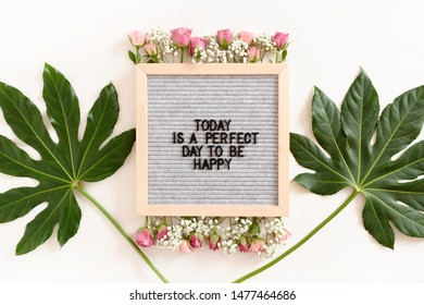 Quote Today is a perfect day to be happy. Letterboard with frame made of green leaves and flowers on white background