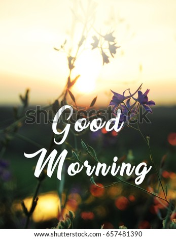 Quotes Good Morninginspirational Quotebeautiful Landscape Stock