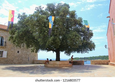 Rab, Rab island, Croatia - July 21, 2018: Town square with large tree in the old town of Rab on the island Rab, Croatia. In the background the peninsula Kalifront. South-East Europe.