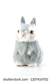rabbit bunny doll isolated on white background