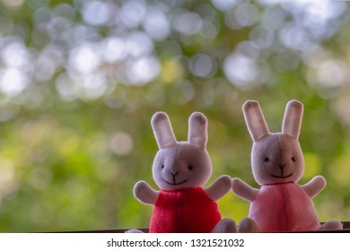 Rabbit lover sitting on a bokeh background