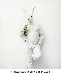 Rabbit man eats celery on a white background