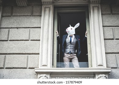 rabbit mask man appeared at the window in the city