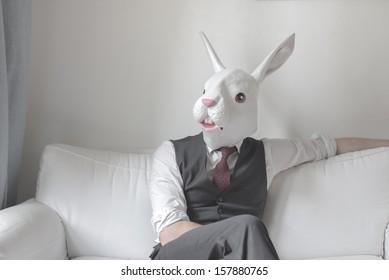 rabbit mask man sitting on sofa at home