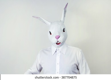 rabbit masked man