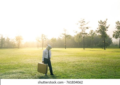 Rabbit masked man walks with suitcase in the misty field