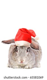 Rabbit in a Santas hat, isolated on white.