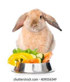 Rabbit sitting with a bowl of vegetables. isolated on white background.