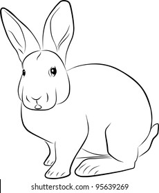 rabbit sketch - freehand illustration on a white background
