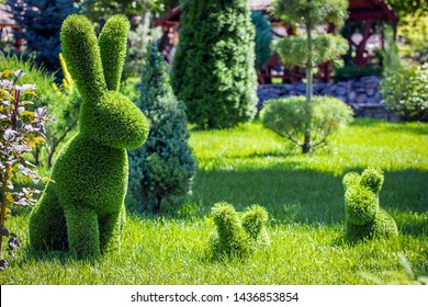 rabbits created from bushes at green animals. Topiary Gardens