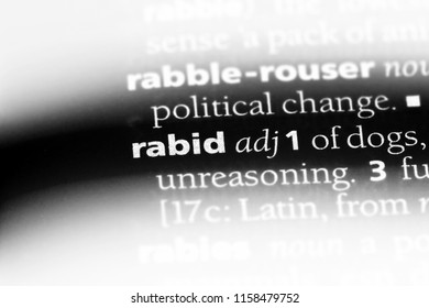 rabid word in a dictionary. rabid concept.