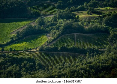 Raccatederighi, Grosseto, Tuscany - fraction of the Italian town of Raccastrada, in the province of Grosseto, in Tuscany, ancient medieval village, panoramic view of the vineyards