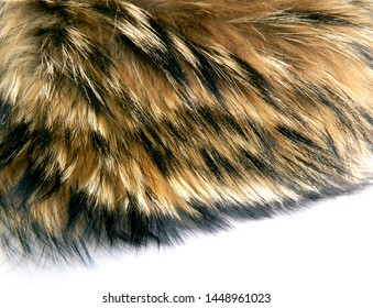 Raccoon fur on white background. Texture of black and brown animal fell