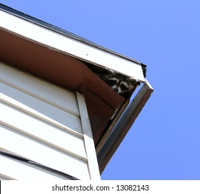 Roof Fascia Images Stock Photos Amp Vectors Shutterstock