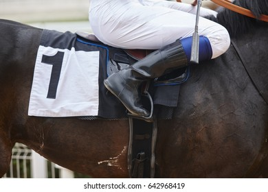 Race horse with jockey before the race. Effort background. Horizontal