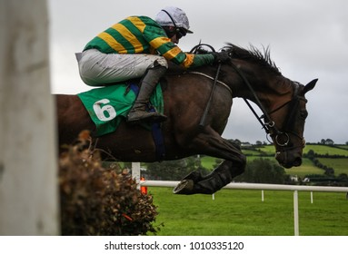 Race horse and jockey jumping over a hurdle