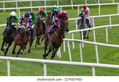 Race horse and jockey taking the lead on the final turn towards the finish line