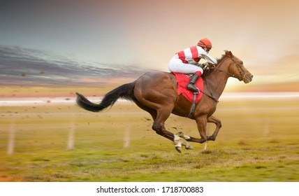 Race horse with jockeys on the home straight. Shaving effect.
