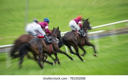 Race horse motion blur