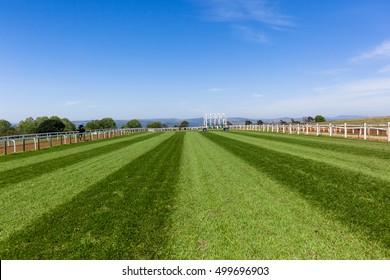 Rennpferd-Landschaft Race Pferd Grass Training Tracks blaue Himmelslandschaft.