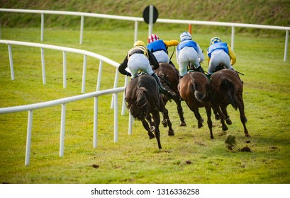 Race horses and jockeys competing on the  final turn of the race track