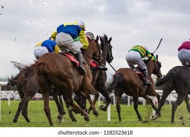 Race horses and jockeys galloping at speed towards the finish line