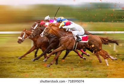 Race horses with jockeys on the home straight. Shaving effect.