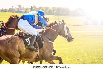 Race horses and jockeys racing into bright sunlight