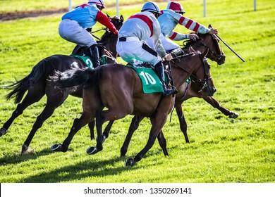 Race horses and jockeys sprinting towards the finish line