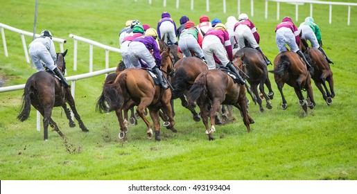 race horses and jockeys turning the corner during a race