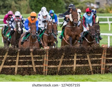 Race horses jumping hurdle