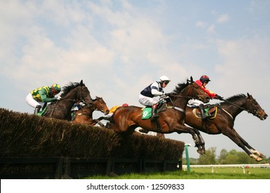 race horses jumping hurdles at speed