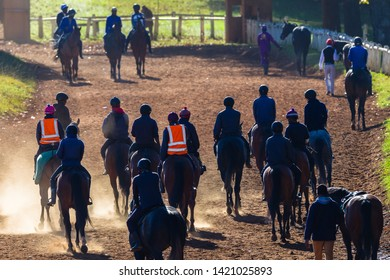 Race horses and riders unidentified silhouetted walking riding going to stables on dirt path after morning training session