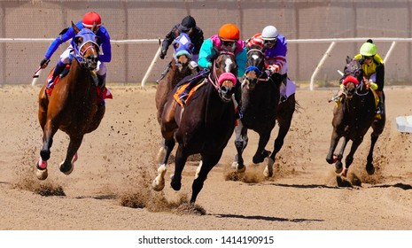 Race Horses Rounding the Final Curve